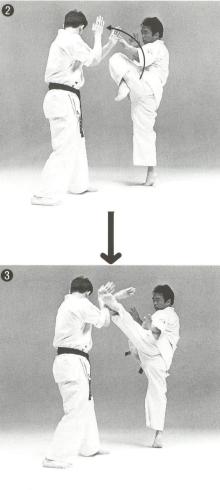 図3 (3)