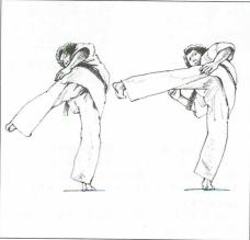 図8 (3)