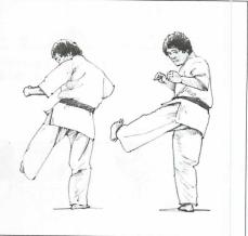 図9 (2)